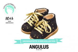 Angulus_10årskollektion