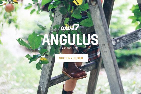 Angulus nyheder efterår